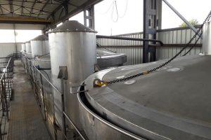 Distillery_Bulgarian_Herb_BG_53